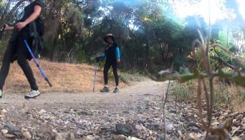 Family Hiking at Placerita Canyon